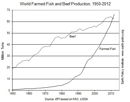 FishVSBeef-Chart