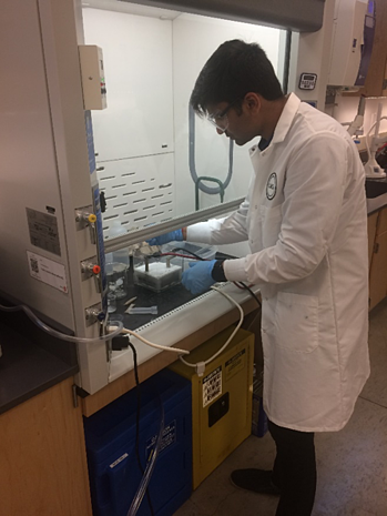 An OriginClear lab technician tests micro-toxin levels