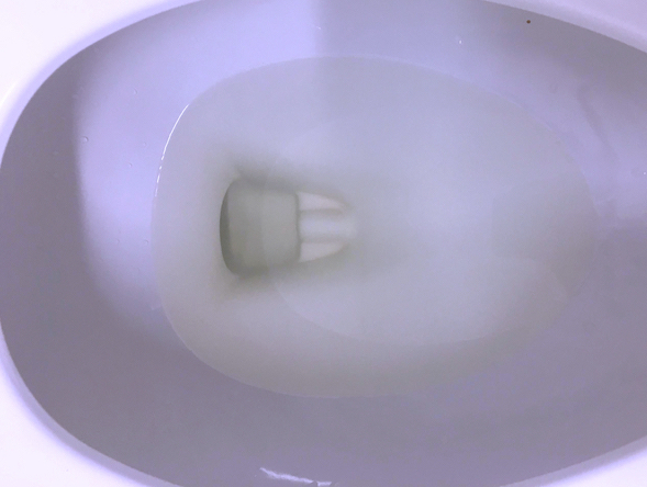 Fully Treated Water for Toilet Reflush