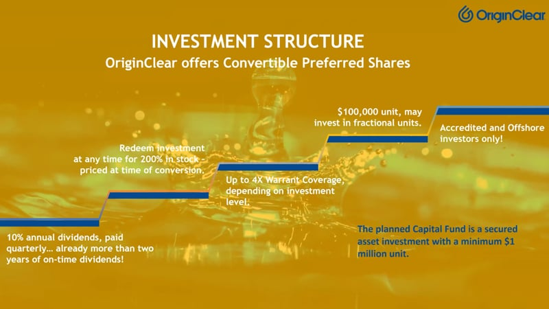 LD M icro presentation Investment Structure
