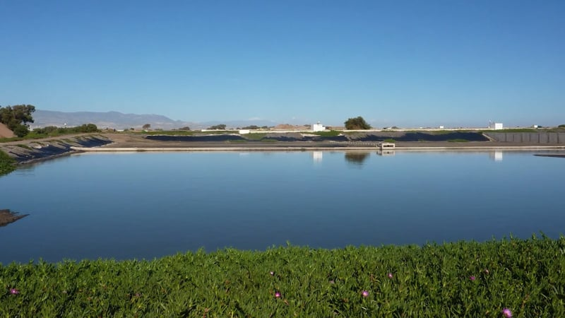 Agriculture Lagoon