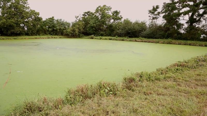 MHP sewage lagoon