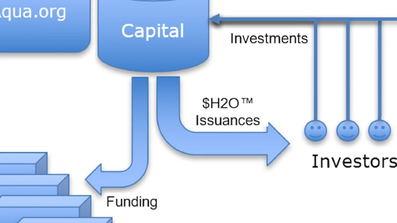 $H2O Investment coin
