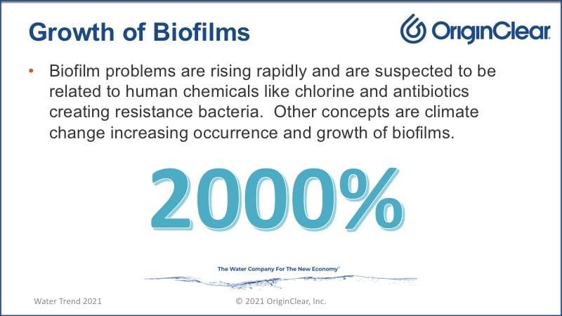Biofilm's 2000% growth