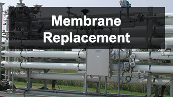 Membrane Replacement